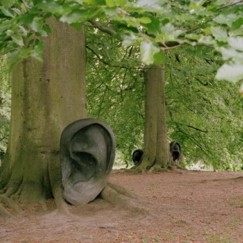 rec128_Il bosco ascolta e guarda_Claudio Parmiggiani